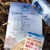 2015小江戸川越ハーフマラソンレポ 感動(?)のゴール編