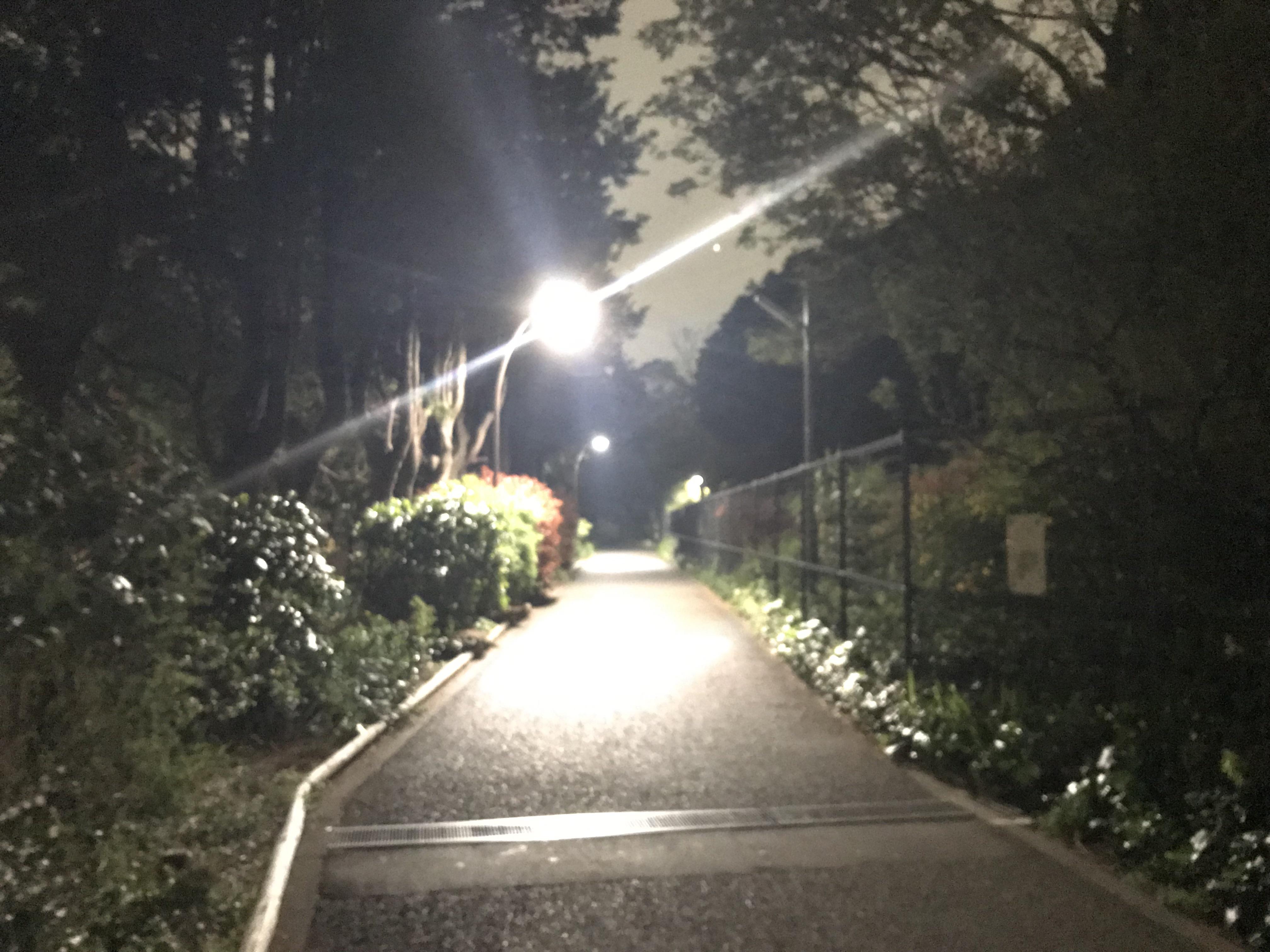 komazawa-park